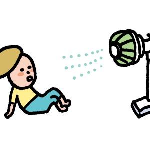 扇風機 サーキュレーター どっちがいい