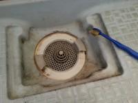 お風呂 排水口 掃除 やり方
