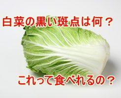 白菜黒い点々